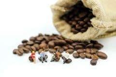 Gente miniatura: el equipo del negocio que se sienta en los granos de café, relaja c fotos de archivo