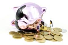 Gente miniatura: Lavoratore con il porcellino salvadanaio rotto con soldi, savi fotografia stock