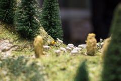Gente miniatura: pastor joven que lee un libro y las ovejas que caminan alrededor de él en la hierba verde del césped Foto macra, Foto de archivo