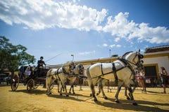 Gente montada en un caballo de carro fotos de archivo