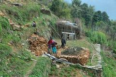 Gente nepalese che sistema legno nel Nepal Fotografie Stock