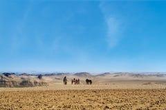 Gente no identificada en desierto de gran Giza, El Cairo en Egipto Fotografía de archivo