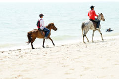 Gente, playa y caballos Imagen de archivo