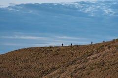 Gente que camina abajo de una montaña fotografía de archivo
