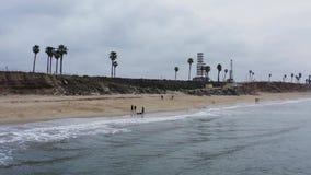 Gente que camina con el perro en la playa CA del perro almacen de video