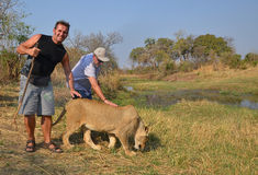 Gente que camina con los leones Fotos de archivo libres de regalías