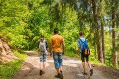 Gente que camina en bosque en verano Fotos de archivo