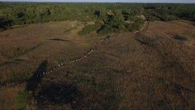 Gente que camina en campos rurales almacen de metraje de vídeo