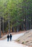 Gente que camina en el bosque Imágenes de archivo libres de regalías