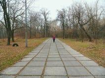 gente que camina en el camino en el parque, otoño 2016 Imagenes de archivo