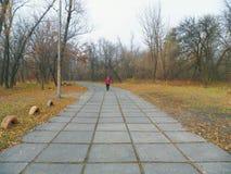 gente que camina en el camino en el parque, otoño 2016 Fotografía de archivo libre de regalías