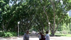 Gente que camina en Hyde Park Sydney almacen de video