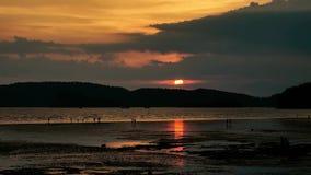 Gente que camina en la playa en la puesta del sol cuando la marea es baja almacen de metraje de vídeo