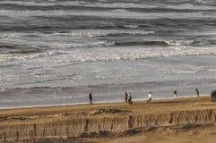 Gente que camina en la playa ventosa fotografía de archivo libre de regalías