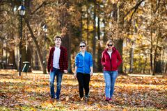 Gente que camina en parque de la ciudad Imagen de archivo libre de regalías