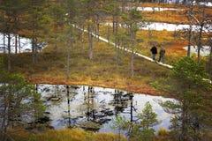 Gente que camina en paseo marítimo en el parque nacional de Lahemaa en Estonia Imágenes de archivo libres de regalías