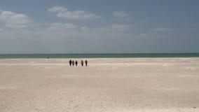 Gente que camina en Shell Beach en el parque nacional de la bahía del tiburón, Australia occidental almacen de metraje de vídeo