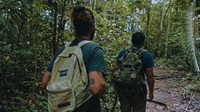 gente que camina en una línea en una trayectoria de la selva tropical durante un alza a través de la vegetación enorme imágenes de archivo libres de regalías
