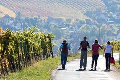 Gente que camina en viñedos Foto de archivo