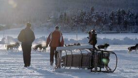 Gente que camina hacia perros en la nieve metrajes