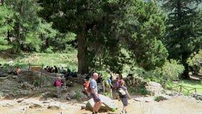 Gente que camina a través de Samaria Gorge en Creta Grecia Arrastre llevar a través de las montañas de Lefka Ori hacia el mar almacen de metraje de vídeo