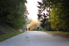 Gente que completa un ciclo en montar en bicicleta a través de un bosque en un largo camino que se divierte motorista, biking, ca imagen de archivo libre de regalías