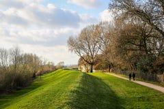 Gente que da un paseo en un parque Foto de archivo