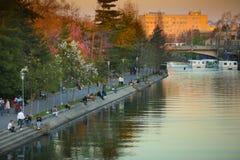 Gente que disfruta de la puesta del sol en los bancos del río de Bega imágenes de archivo libres de regalías