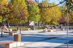 Gente que disfruta de la sol en el parque de la ciudad imagen de archivo