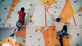 Gente que entrena en una pared, cierre de los deportes para arriba almacen de video