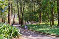 Gente que goza del parque de Aclimacao en Sao Paulo Imagen de archivo