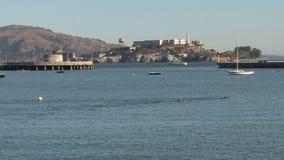 Gente que nada delante de Alcatraz, San Francisco almacen de video
