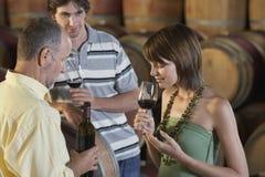 Gente que prueba el vino al lado de los barriles de vino Imagen de archivo