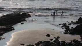 Gente que se divierte en la playa almacen de metraje de vídeo