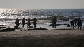 Gente que se divierte en la playa metrajes