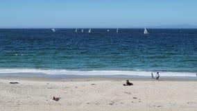 Gente que se divierte en la playa tropical con agua azul y los veleros metrajes