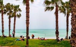 Gente que se relaja en la hierba cerca de la playa Fotos de archivo libres de regalías
