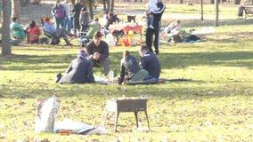 Gente que se relaja en la hierba en el parque almacen de metraje de vídeo