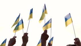 Gente que sostiene las banderas ucranianas, vista posterior almacen de video