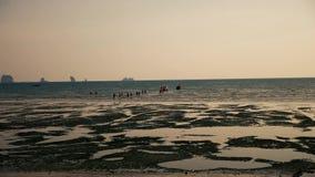 Gente que viene en la playa del barco cuando la marea es baja almacen de video