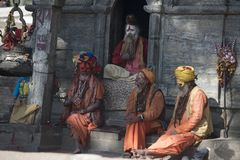 Gente santa in India, Varanasi Dicembre 2017 puja fotografia stock