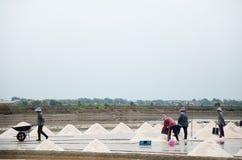 Gente tailandese che tiene sale dall'agricoltura del sale Fotografie Stock Libere da Diritti