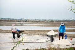 Gente tailandese che tiene sale dall'agricoltura del sale Immagini Stock Libere da Diritti