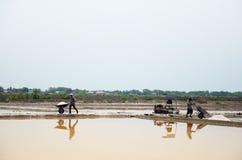 Gente tailandese che tiene sale dall'agricoltura del sale Fotografia Stock