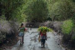 Gente tibetana che cammina sulla strada rurale immagine stock