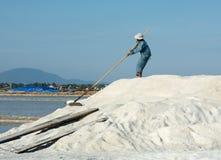 Gente vietnamita che lavora al giacimento del sale Fotografie Stock
