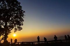 Gente y árboles silueteados con puesta del sol Foto de archivo libre de regalías