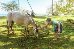 Gente y animales la muchacha en el sombrero que frota ligeramente el pasto en un caballo verde del prado Fotografía de archivo libre de regalías
