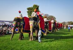 Gente y elefantes durante un festival colorido Imágenes de archivo libres de regalías