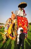 Gente y elefantes durante un festival colorido Fotografía de archivo libre de regalías